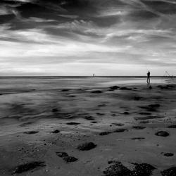 Eenzame visser