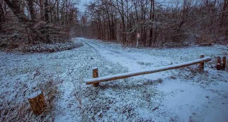 Ingang waerderhout -
