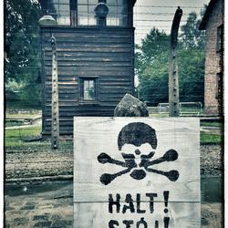 Auschwitz - Halt!