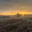 Herfst Brunssummerheide zonsopkomst