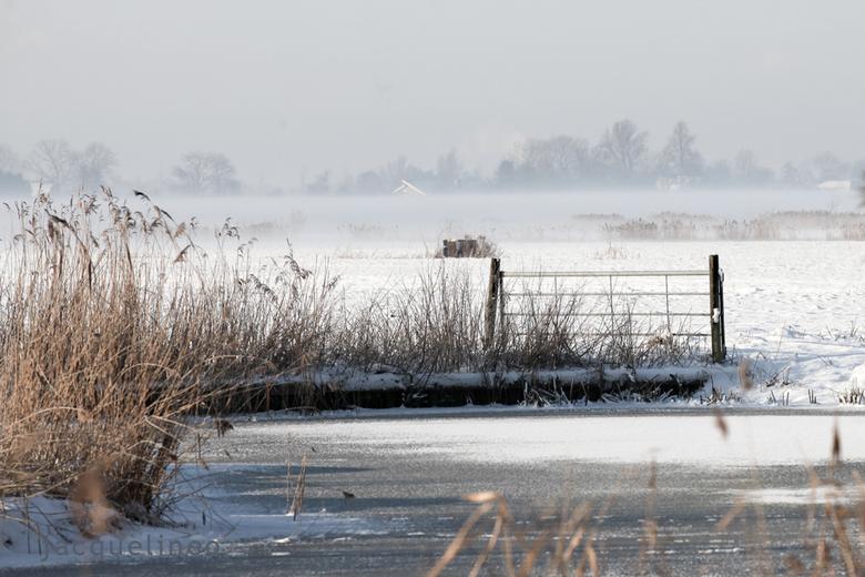 winterwonderland - Laaghangende mist, opkomende zon