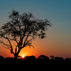 zonsondergang #1 fb