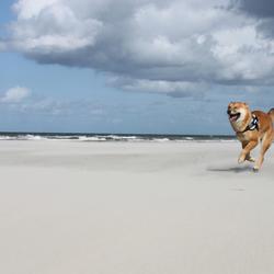 Yuko op het strand