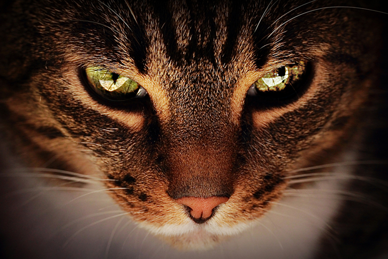 I'll be watching you - Very closely..