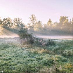 ochtenzonnetje breekt door