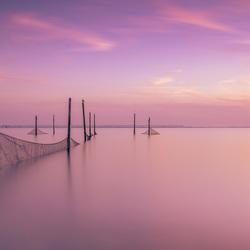 Visnetten bij zonsondergang in Hellevoetsluis