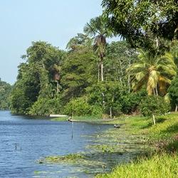 Wanhatti Suriname