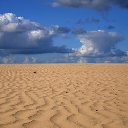 Drunense duinen I