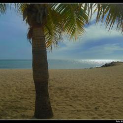 Bounty-beach