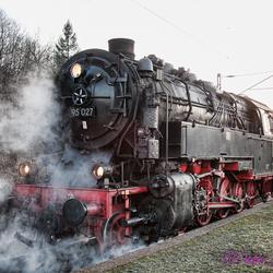 Bergkönigin 95-027