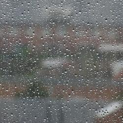 17-08-2019 Zeer veel regen