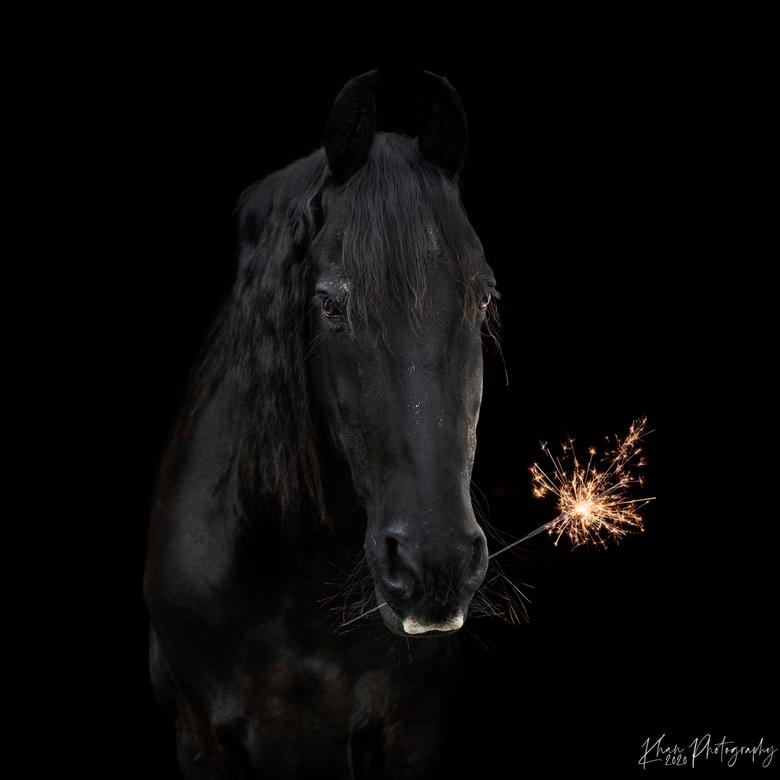 Happy new year! - Gelukkig nieuwjaar, en de beste wensen voor 2021!