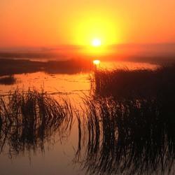 Zon boven de Limpopo