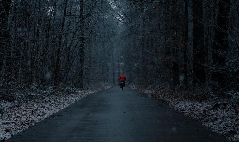 Details create the big picture. - Gauw op pad, want het sneeuwt. Foto gemaakt in de Emmerdennen met een ' toevallig' voorbij gaande fietser.