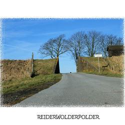 Groninger polder