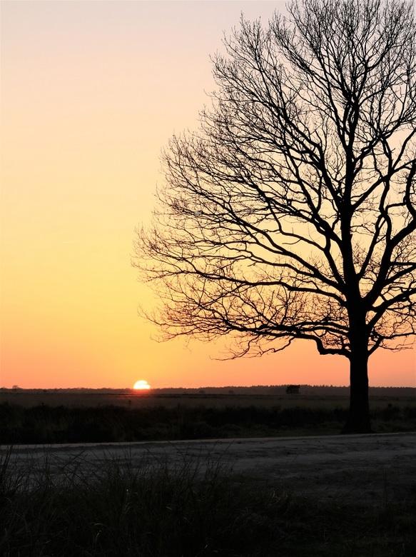 Zonsondergang Dwingelderveld - Afgelopen zondag ging de zon prachtig onder in het Nationaal Park het  Dwingelderveld. Super locatie, waar ik graag kom