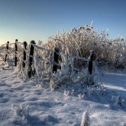 Sneeuwlandschap1