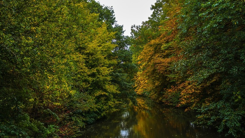 Herfst Bocht - Photo 2015 © @MrOfColors #MrOfColorsPhotography