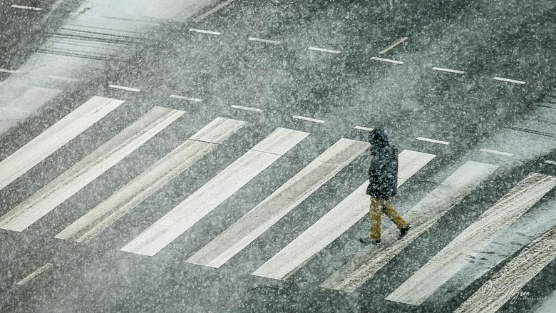 Sneeuw -