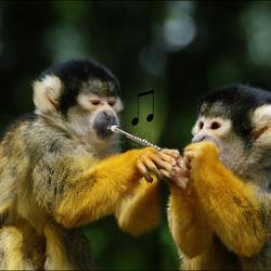 iedereen op muziekles...............