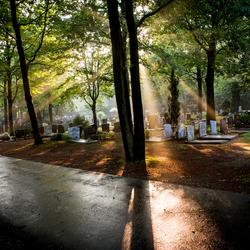 Avondzon op begraafplaats
