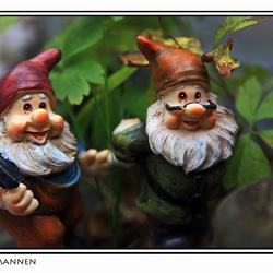 De tuinmannen
