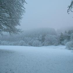 Winter in de Belgische Ardennen