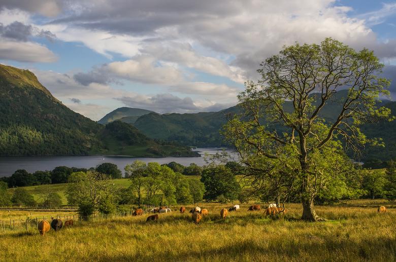Ullswater in The Lake District - Ullswater in The Lake District. Pentax K-5 en SMC FA 35 F2 AL lens.