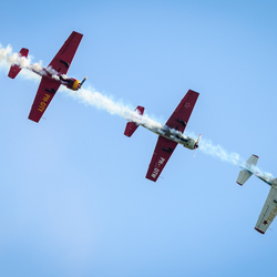 Wings of Freedom Ede