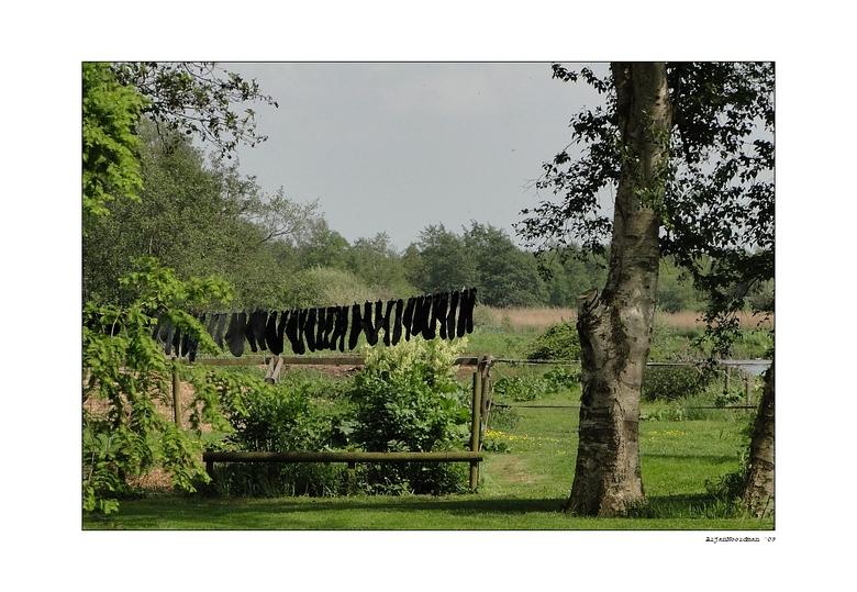"""Sokkenwasdag - This socks <img  src=""""/images/smileys/wilt.png""""/><br /> <br /> Zaterdag = Sokkenwasdag (??) in het prachtige natuurgebied: De Rottige"""