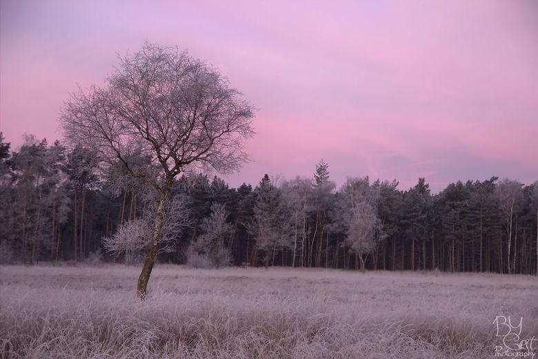 Malpie op vroege koude ochtend - Heerlijke koude ochtend op de Malpie.<br /> De kleuren waren magisch mooi!