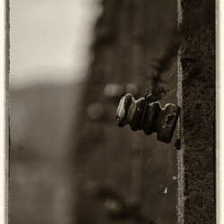 Auschwitz-Birkenau (2)