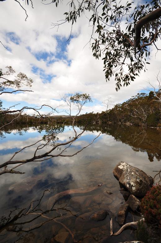 Reflectie - Weerspiegeling in een meer in Mt Field National Park - Tasmanië - Australië