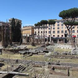 Kattenforum Rome