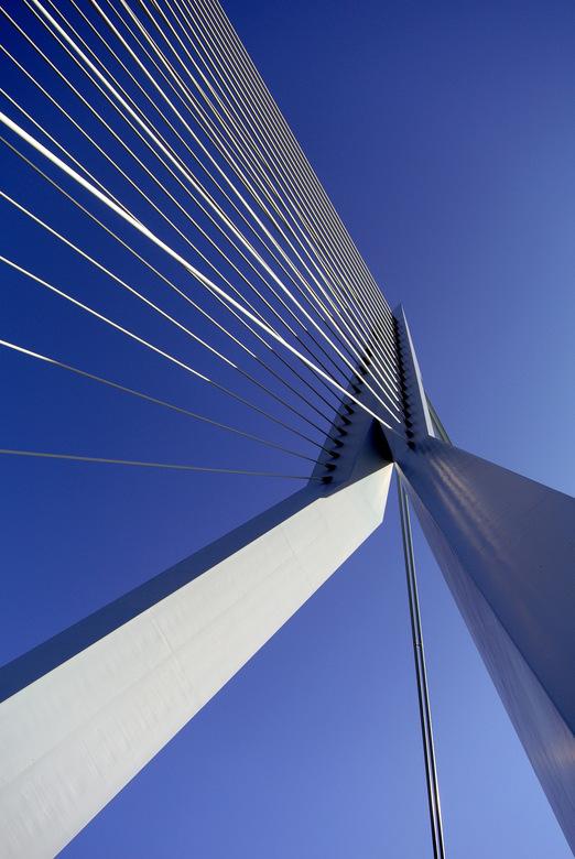 Erasmusbrug - Deze brug zal ongetwijfeld veel op deze site voorkomen. Maar het blijft een aantrekkelijk object.