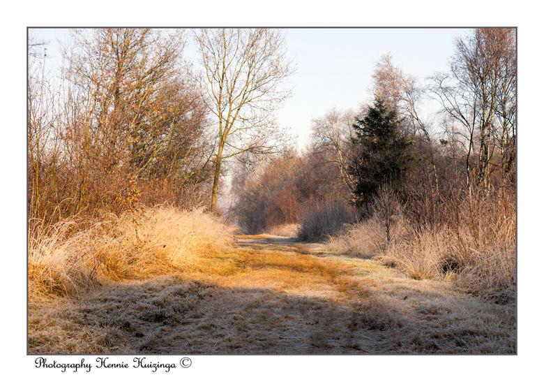 Winterse landschap - Winterse landschap<br /> <br /> Was genieten, mag van mij wel weer komen.(vorst)<br /> <br /> Groetjes Hennie en fijn weekend