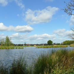 Voorjaar aan de Wittsee