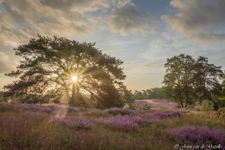 Brunssummerheide tijdens de zonsookomst - De Brunssummerheide tijdens de zonsopkomst.<br /> <br /> Bedankt, voor jullie fije reacties.<br /> Groet,