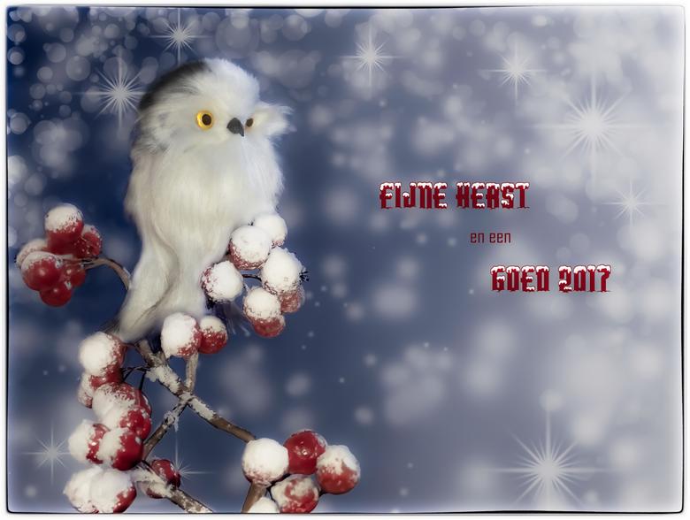 Fijne feestdagen - Jullie allemaal wens ik goede kerstdagen toe met jullie dierbaren en gezondheid, geluk en warmte voor 2017. En hopelijk wordt het o