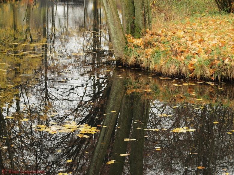 Herfst reflecteerd in het water - Herfst in het water Kasteel de Haar