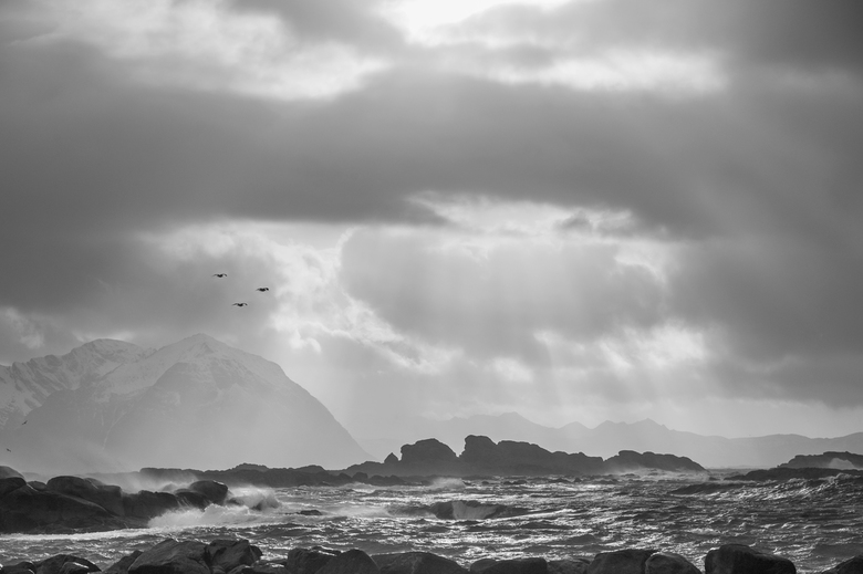 Storm - Storm in de haven van Larvik, Lofoten, Noorwegen