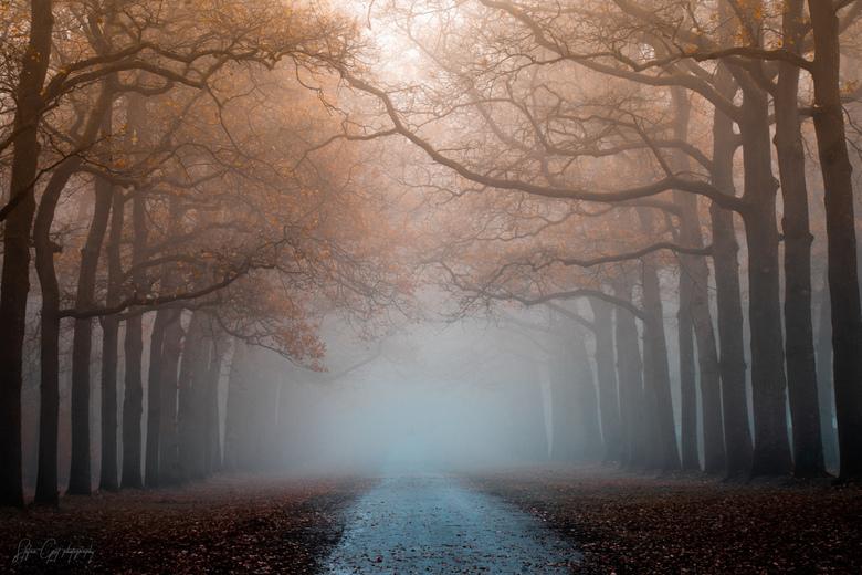 Take a walk -