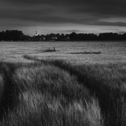 Lage Mierde by night
