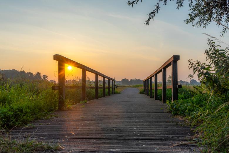 """Bridge - Laag standpunt van het bruggetje, zodat het zonnetje er nog mooi tussendoor piept <img  src=""""/images/smileys/smile.png""""/>  Was mooi tijdens z"""