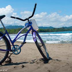 Beach cruzer