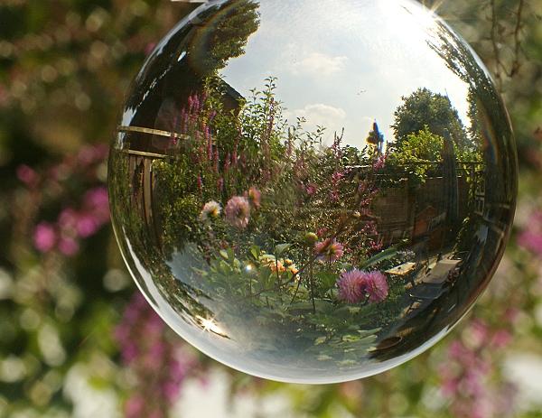 De Magische Tuin : Het magische licht de tuin van loes