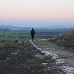 Turen naar de horizon