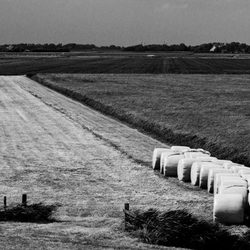 Texel is mooi