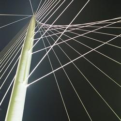 Harp in de nacht