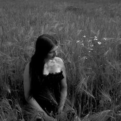 In de veld